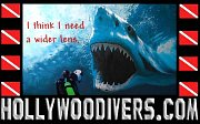 Hollywood Divers - Scuba Center